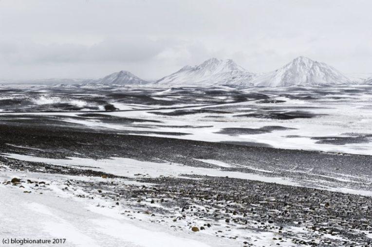 islande_montagnes_blogbionature