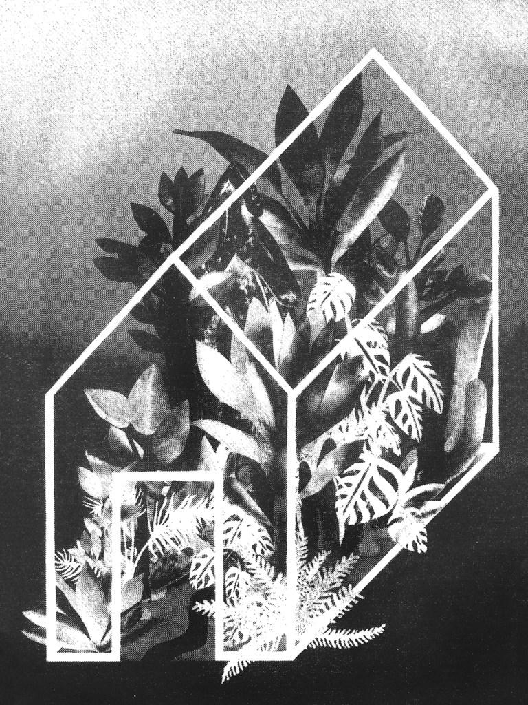 Plants + Spaces=Places © tali bayer