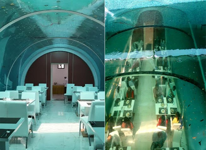 Real Poseidon Is Indias First Underwater Restaurant In