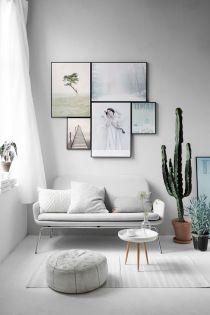 cactus_suculentas_terrarios_10