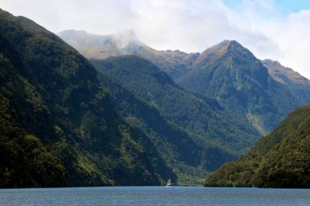 A boat travels the waters in Doubtful Sound