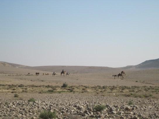 Beduinen bei der Arbeit