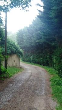 Regenwetter in der Provence