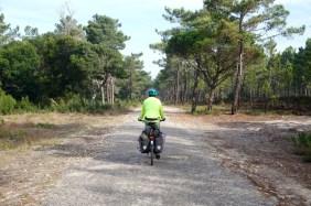 Ruhe und Komfort auf ausgemusterten Waldstraßen