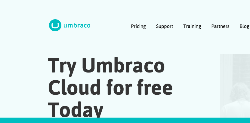 top Drupal alternatives - blogcheater umbraco  Joomla alternatives
