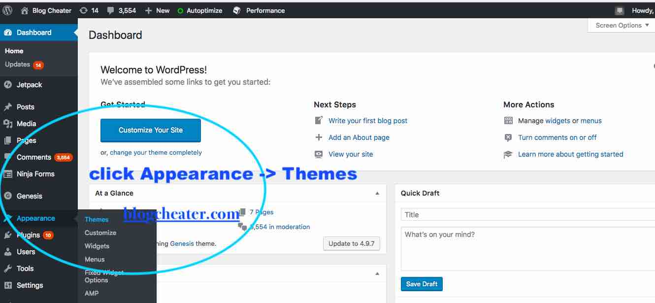 how to start a blog in india - install a wordpress theme