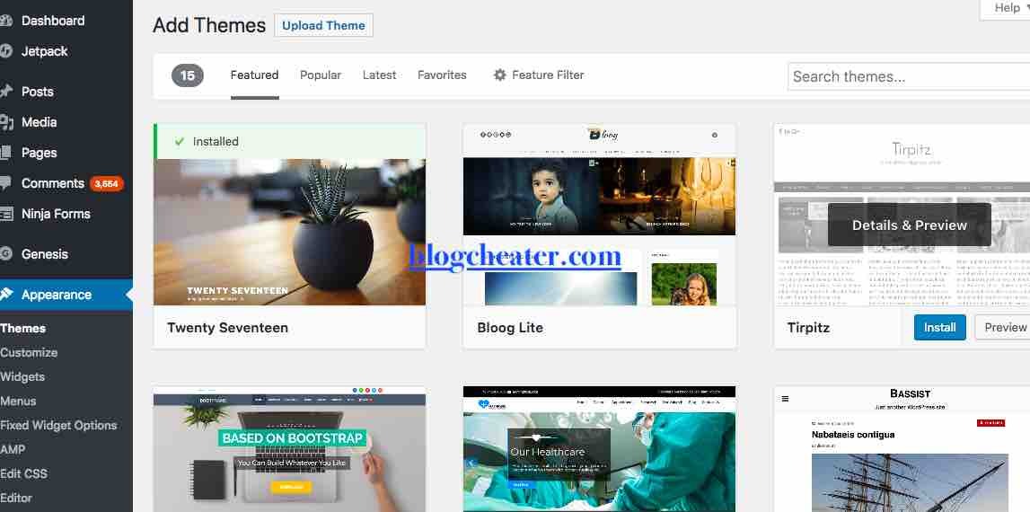 how to start a blog in india - theme install of wordpress