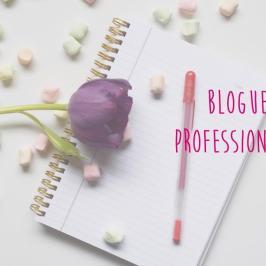Blogueur professionnel: un vrai métier?