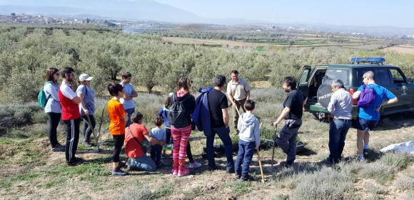 Reforestación 2017 (1)