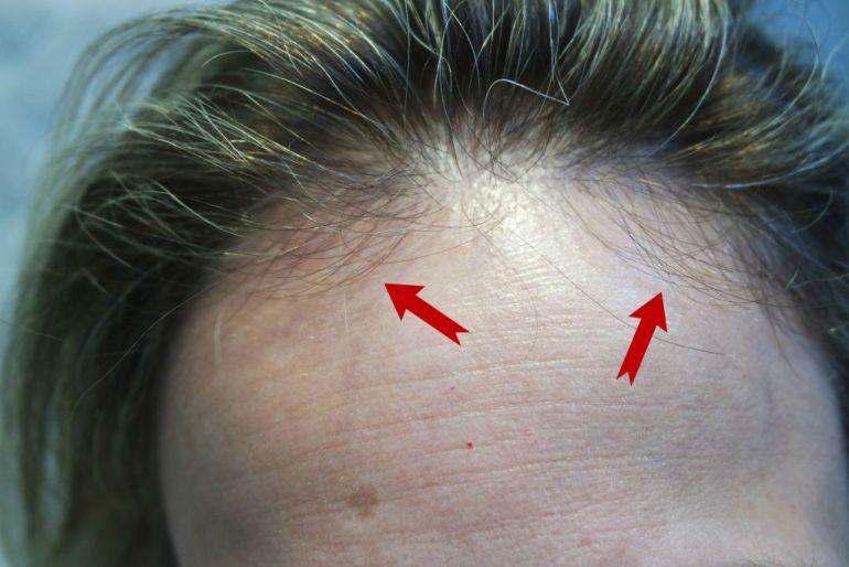 escova michel mercier bio extratus cabelos blog da ana