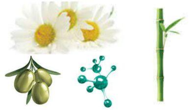 botica camomila bioextratus fórmula