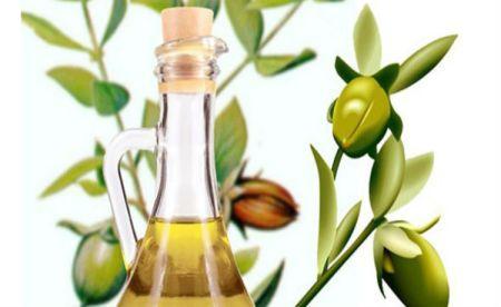 Composto basicamente por ceramidas, o óleo de jojoba evita a perda de água na pele e auxilia no crescimento dos cabelos. (Fonte: Ecycle)