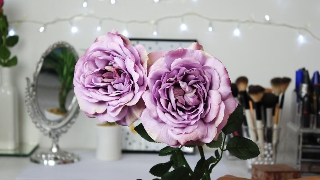 flores permanentes gaho de rosa florae blog da ana