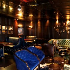 10-of-the-Most-Beautiful-Hotel-Bars-los-angeles-roosevelt-library-bar-720x720-slideshow