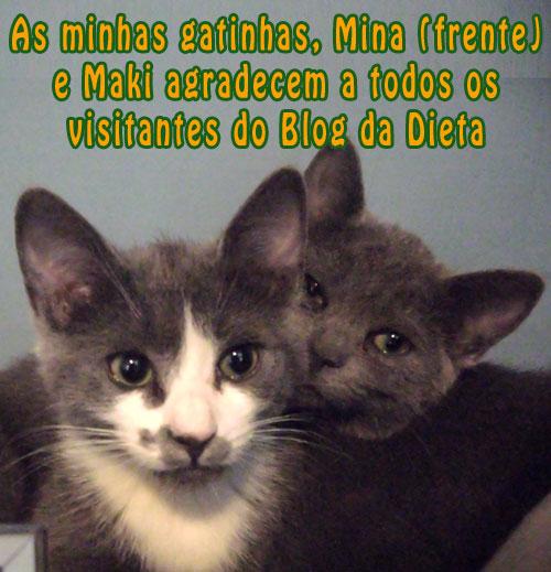 maki_mina_blog_dieta