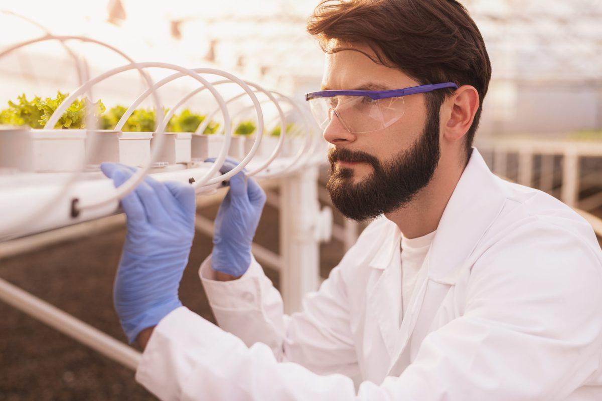 Engenharia de Horticultura