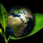 Por uma retomada verde da economia