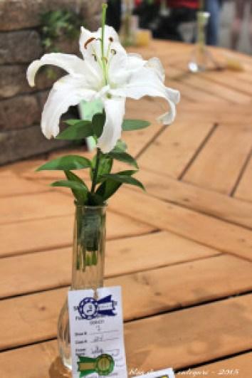 blog - flores III - san diego