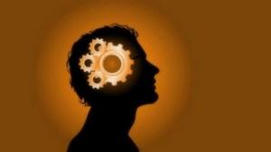 neurose foraclusao paranoia blog