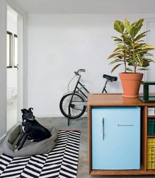vaso-croton-tapete-bicicleta-marcenaria-frigobar