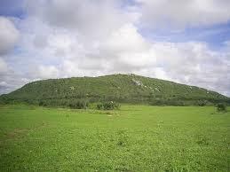 Serra do Torreão, reserva ecológica do município
