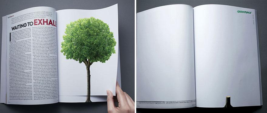 La deforestación continúa con la vuelta de una página