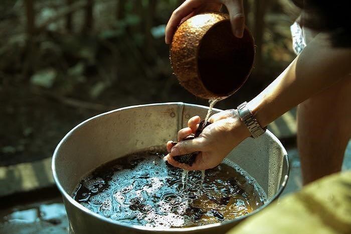 cách nấu vỏ bưởi gội đầu, bồ kết, lá hương nhu