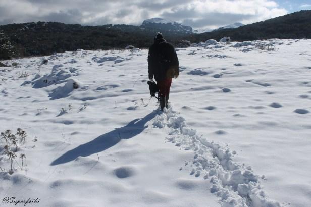 sierra-de-las-nieves