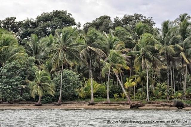 Vistas desde la barca camino a Playa Estrella, en Bocas del Toro, Panamá