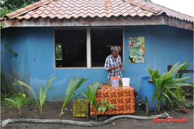 Artesano prepara souvenirs con hojas de palma. Muchos habitantes del Pueblo de Tortuguero se dedican a la artesanía. En Blog de Viajes de Pumuki, Costa Rica, Tortuguero