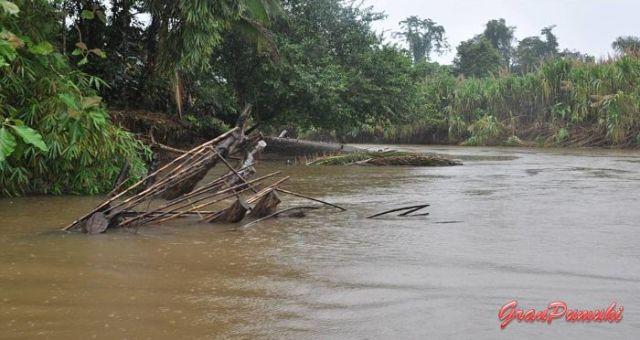 Travesía en barca desde la Pavona hasta Tortuguero por los canales. En blog de viajes, Tortuguero, Costa Rica con niños