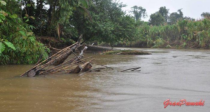 Canal para llegar a Tortuguero por libre