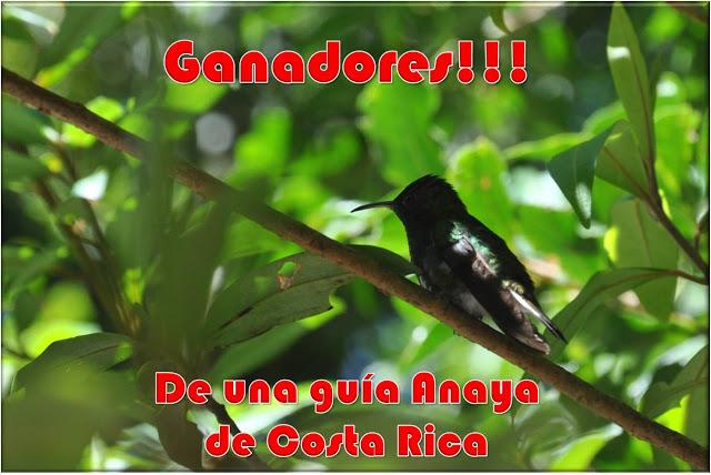 Ganadores de una guía de viaje a Costa Rica
