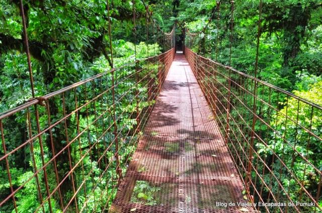 El Puente Wilford Guindon en la Reserva Biológica Bosque Nuboso Montevrde en Costa Rica