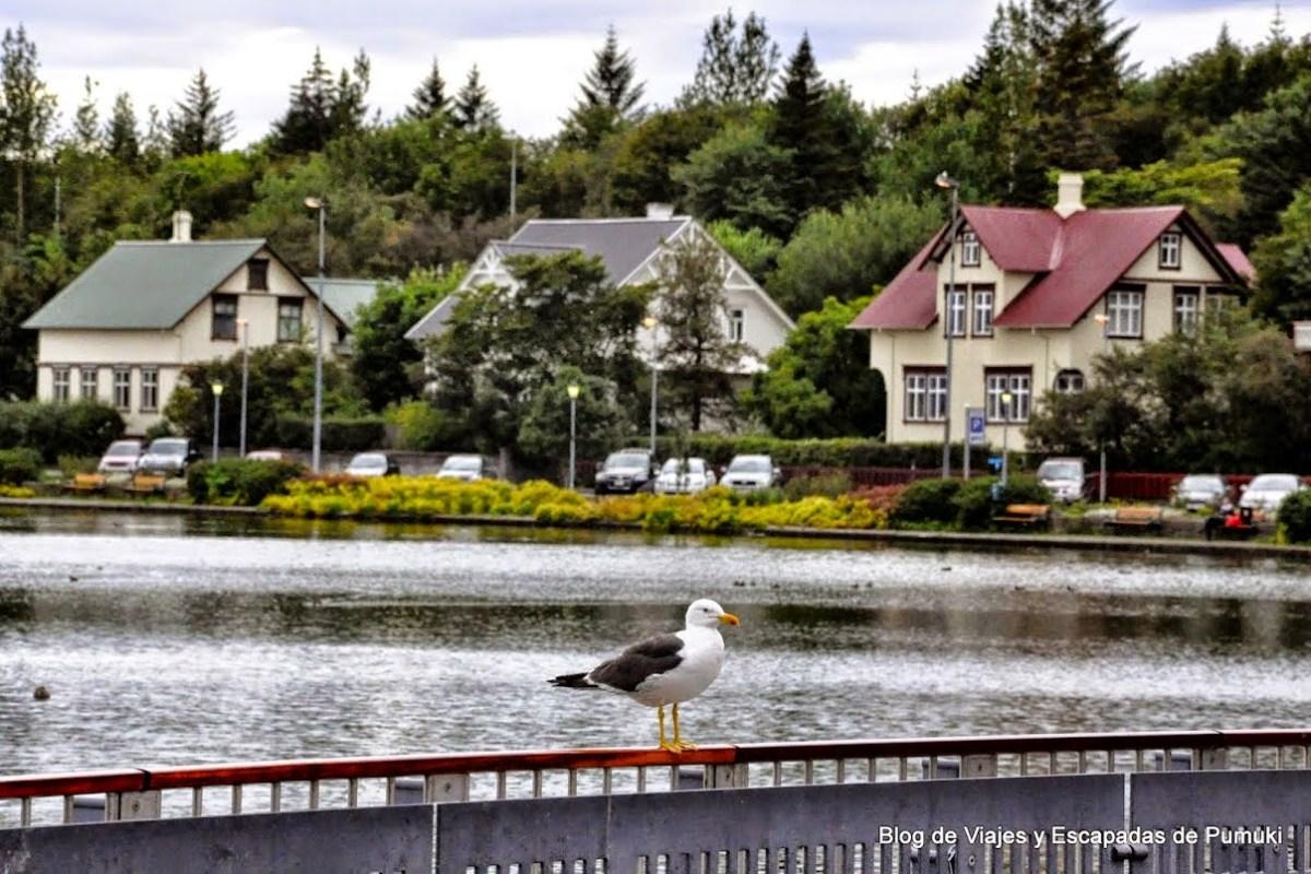Casas junto al lago de Reikiakik