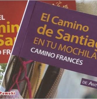 Como Organizar el Camino de Santiago con Niños