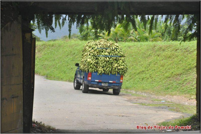 Viaje a la República bananera, Camión de Bananas en Sixaola