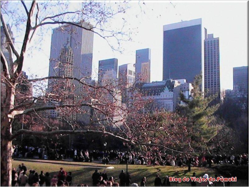 Patinar sobre hielo en Nueva York en Central Park
