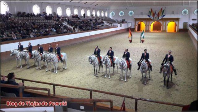 Así Bailan los Caballos Andaluces en Jerez. Escuela Ecuestre de Jerez