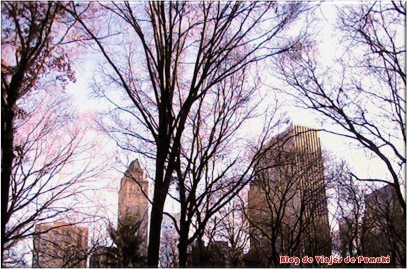 El Central Park es el pulmón verde de Nueva York