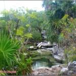 Es posible bañarse en las aguas critalinas de los cenotes de la Riviera Maya en Riviera Maya en Mexico