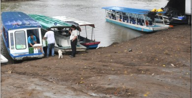 Basrcas para llegar a Tortuguero