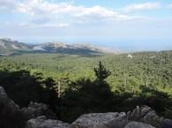 Forêt et barrage de l'Ospédale