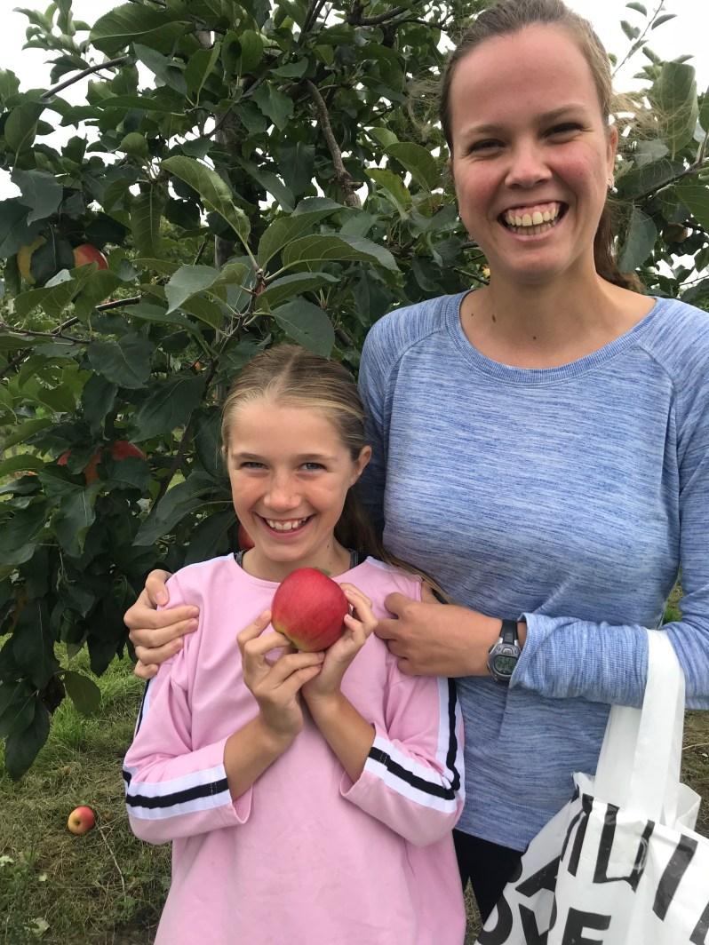 to værtssøstre plukker æbler