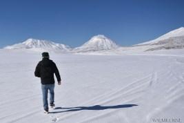 Walmir Cirne - Deserto boliviano (6)