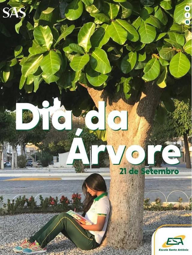 Dia da Árvore – Escola Santo Antônio