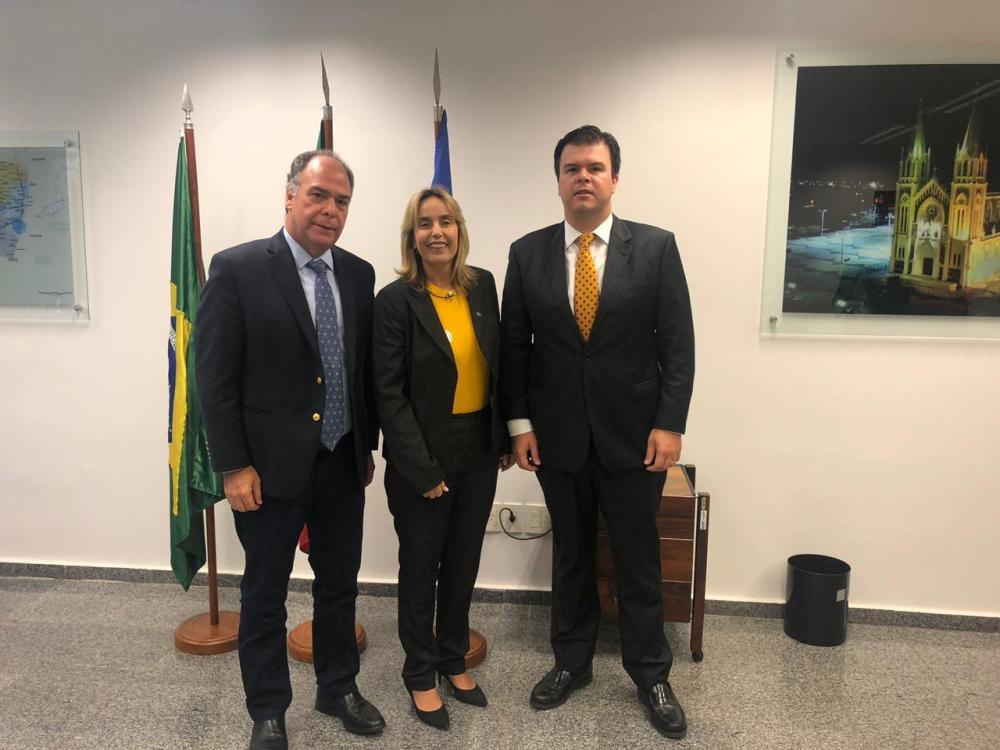 Deputada Alessandra Vieira faz visita ao novo líder no Senado