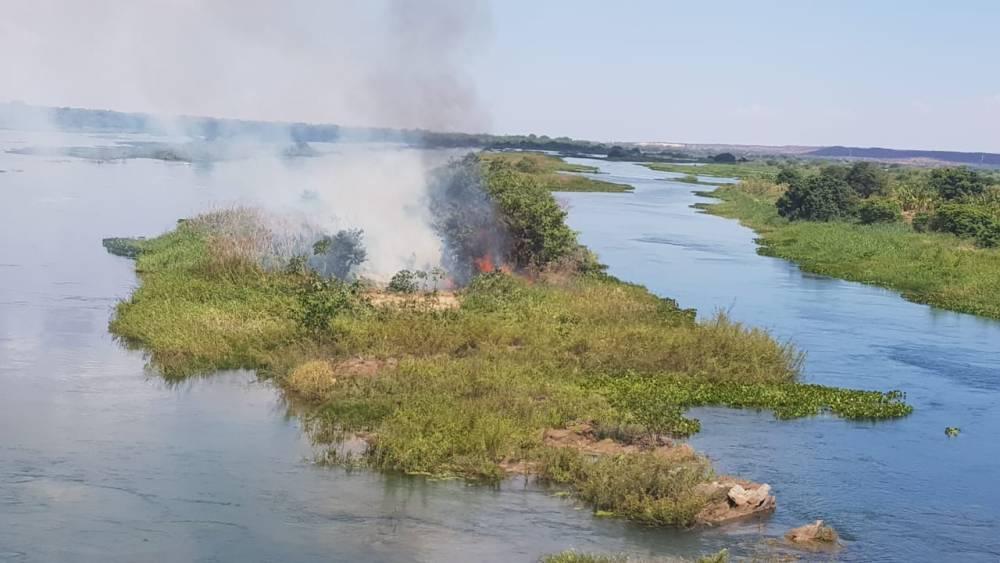 Com apoio de helicóptero, operação erradica 117 mil pés de maconha no Sertão de Pernambuco
