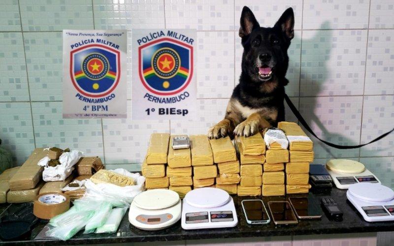 Trio é preso com quase 29 kg de maconha em Caruaru e Agrestina