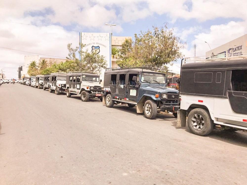 Toyoteiros de Santa Cruz do Capibaribe recebem selo estadual de circulação